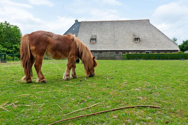 VakantiehuisNederland - Friesland: 't Kleine Deel  [33]