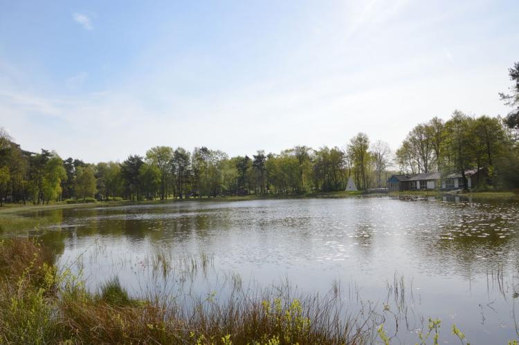 VakantiehuisNederland - Limburg: Bungalow 87  [36]