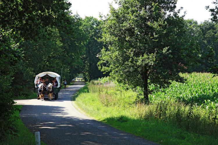 VakantiehuisNederland - Overijssel: Vakantiepark de Lindenberg 6  [22]