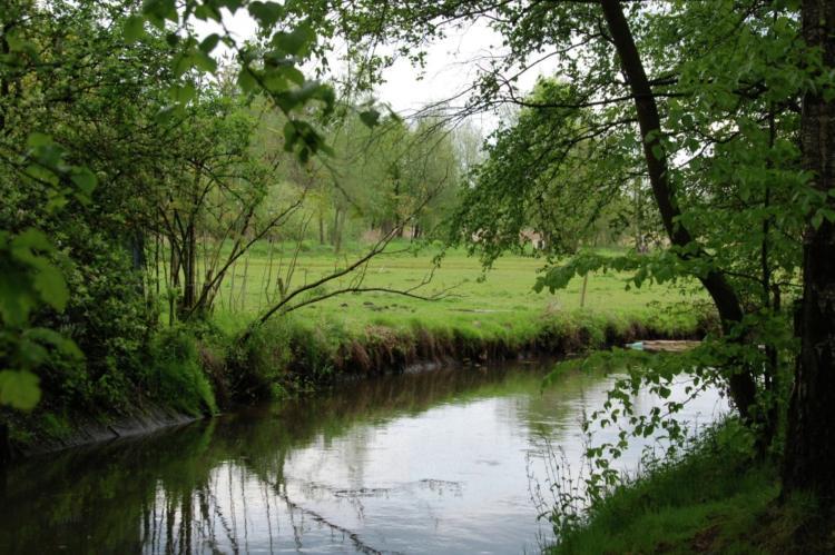Holiday homeNetherlands - Noord-Brabant: De Pastorie  [33]