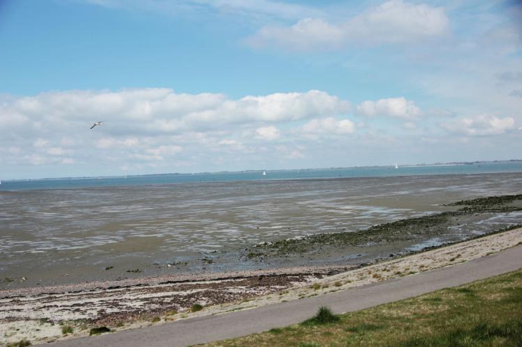 VakantiehuisNederland - Zeeland: Dichtbij de Oosterschelde  [15]