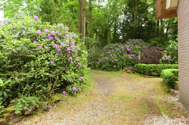 VakantiehuisNederland - Noord-Holland: Huisje op de Hei  [14]