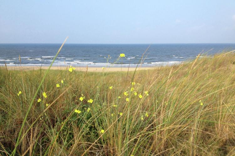 FerienhausNiederlande - Nord-Holland: Huize Glory Smaragd  [14]