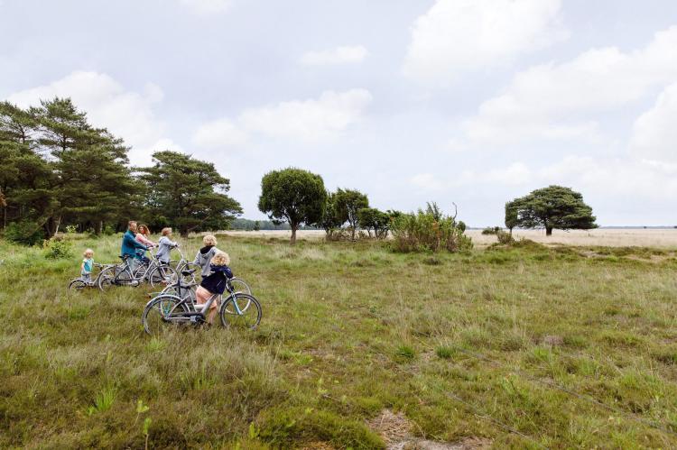 VakantiehuisNederland - Drenthe: RCN Vakantiepark de Noordster 5  [13]