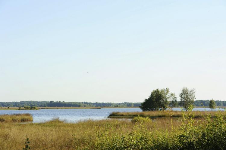 VakantiehuisNederland - Drenthe: RCN Vakantiepark de Noordster 5  [11]