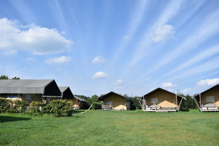 Holiday homeNetherlands - Gelderland: Recreatiepark de Boshoek 2  [3]
