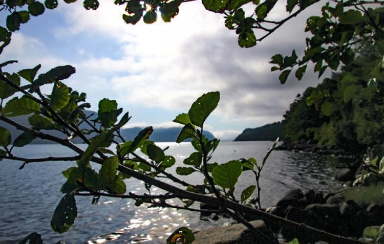 VakantiehuisNoorwegen - Vest-Agder Fylke: Farsund  [7]