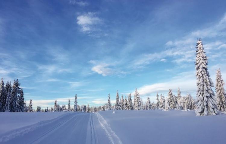 VakantiehuisNoorwegen - Hedmark Fylke: Sjusjøen  [15]