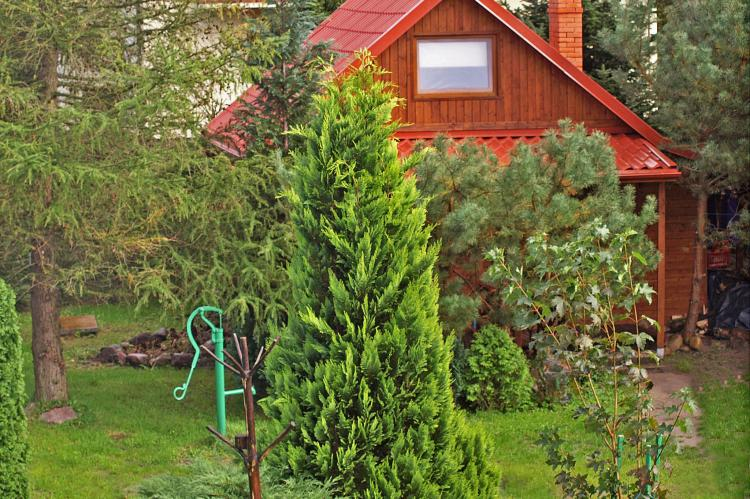 Holiday homePoland - Pomeranian Voivodeship: Charming cottage  [1]