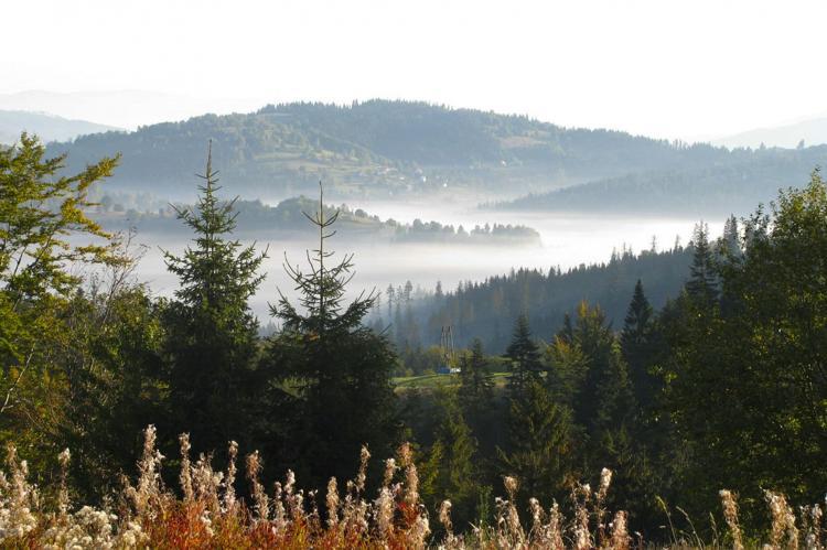 Holiday homePoland - Silesian Voivodeship: Villa with Mountain View  [32]