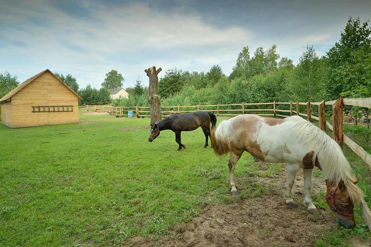 VakantiehuisPolen - Pommeren: Holiday Home Skrzynia 2  [28]