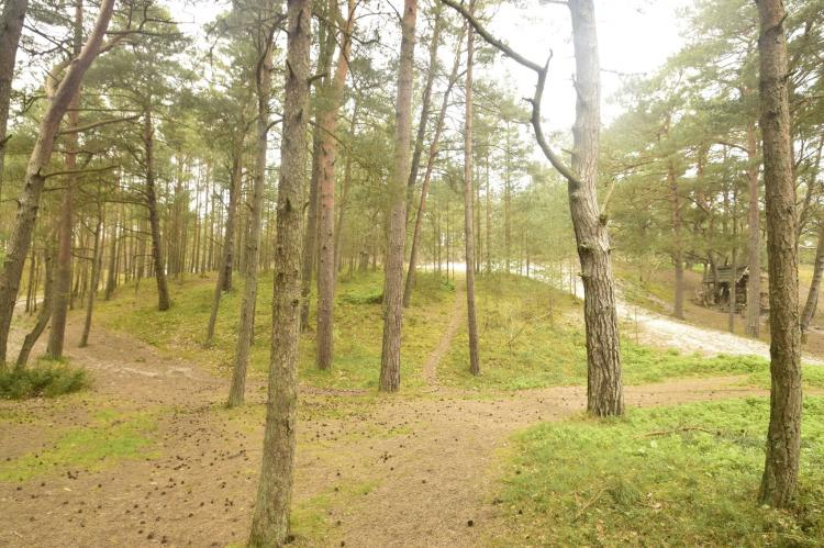 Holiday homePoland - Pomeranian Voivodeship: Willa Karwińskie Błota  [34]