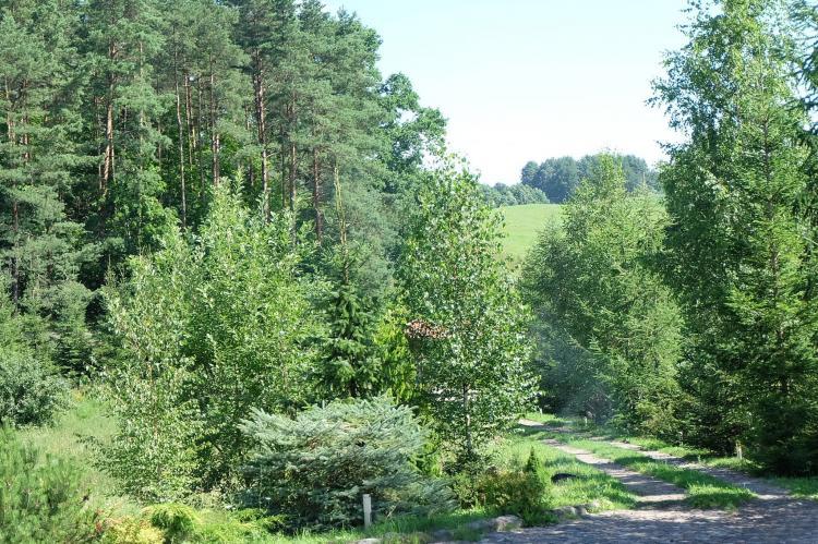Holiday homePoland - Warmian-Masurian Voivodeship: Masurian habitat  [13]