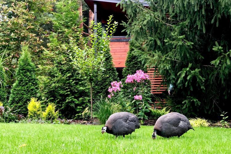 VakantiehuisPolen - Oost Polen: A modern holiday home  [18]