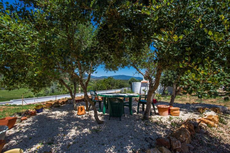VakantiehuisPortugal - Algarve: Quinta Velha - Girassol  [29]
