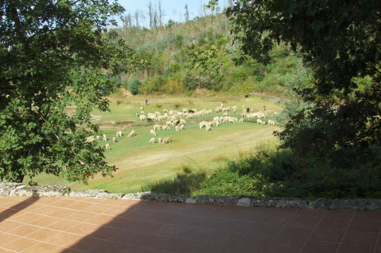 VakantiehuisPortugal - Beiras/Centraal Portugal: Quinta do Fim  [34]