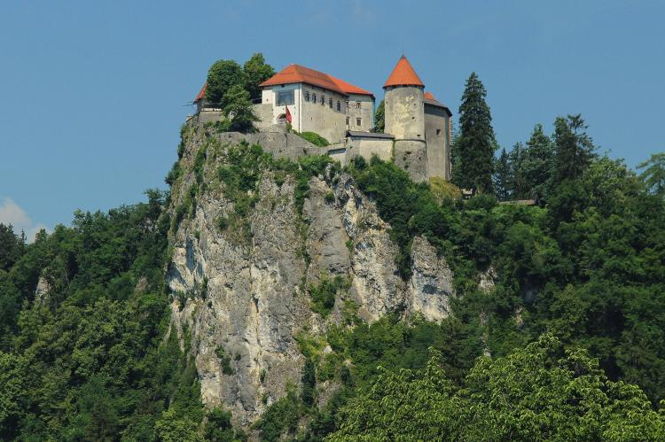 Holiday home - Občina Bled: Apartments Julijana  [13]