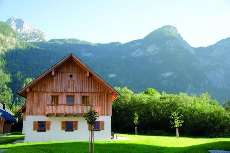 vakantiehuis Luxery Salzkammergut Studio Comfort F in Obertraun