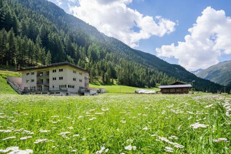 AAP 1 Tirol