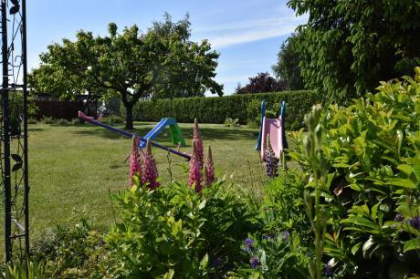 Holiday home Germany - Mecklenburg-Pomerania: