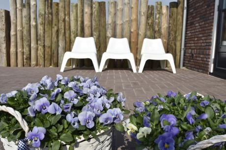 Studio Eb Noord holland