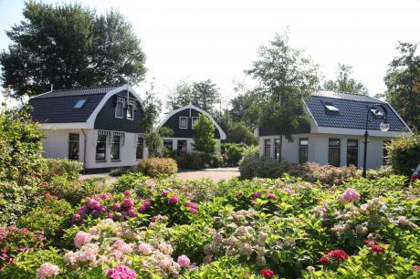 Holiday home Netherlands - Noord-Holland: